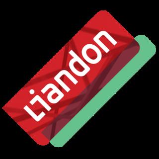 Liandon Case - Optimaal gebruik maken van de diversiteit en krachten in het team