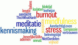 Mindfulness - Van Mind full naar Mindful (2)