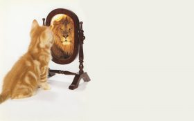 growth en fixed mindset
